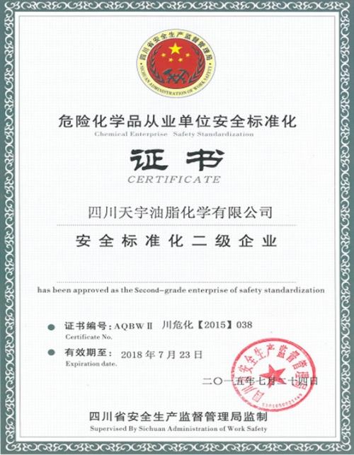 安全标准化二级企业证书