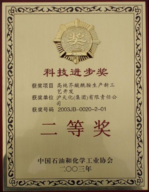 中国石油和化学工业协会二等奖